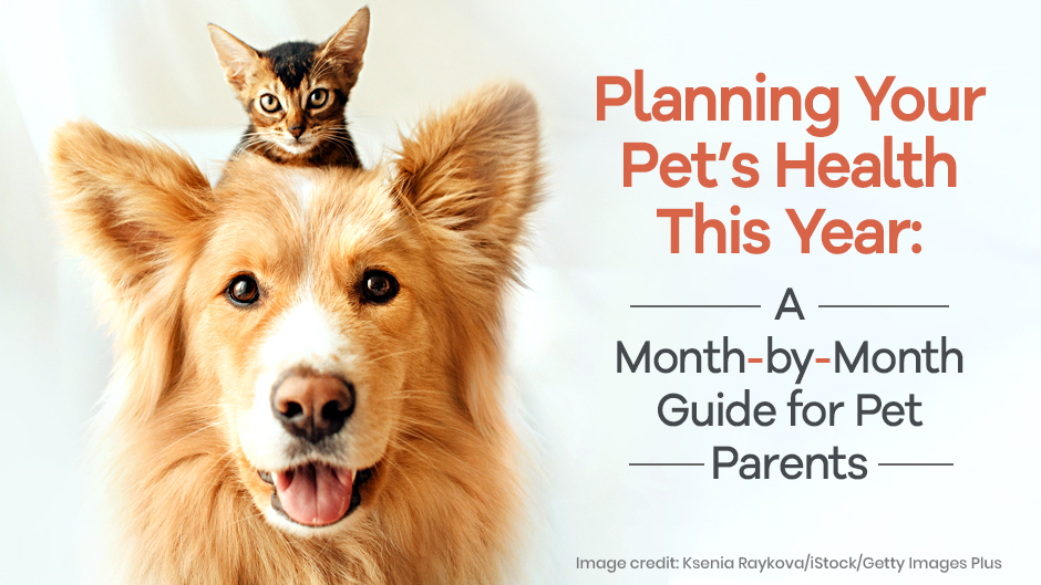 Planning Your Pet's Health