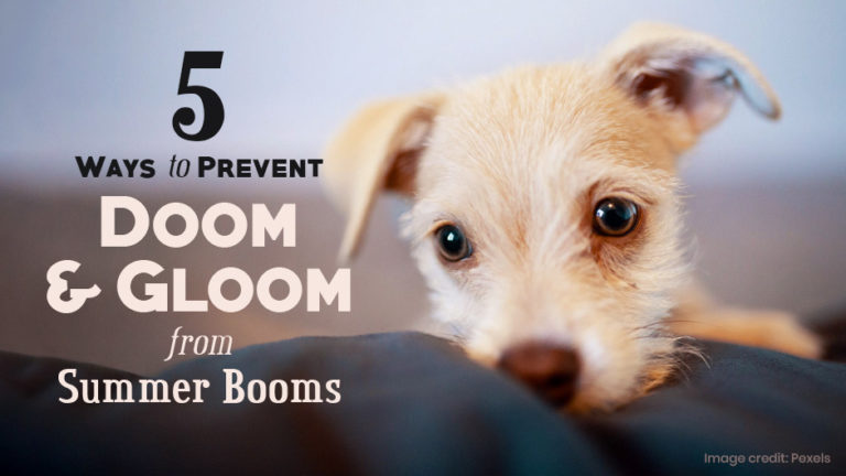 5 Ways to Prevent Doom & Gloom from Summer Booms